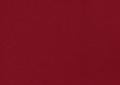 D11 Scarlet polo